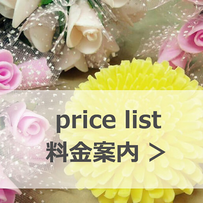 banner-pricepng400